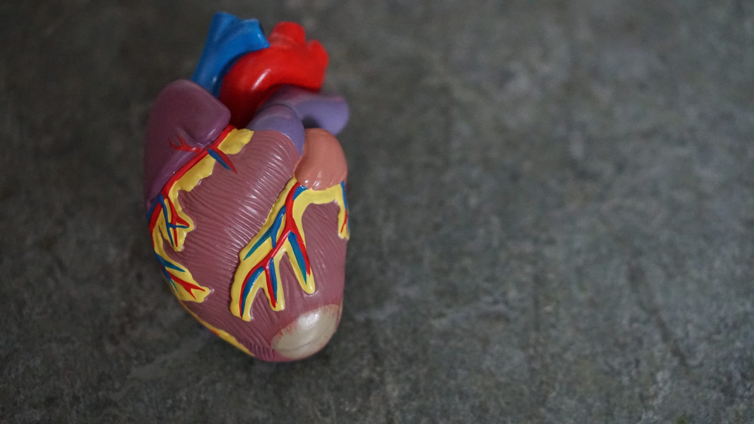 The Importance of Prevention in Heart Disease and Strokes